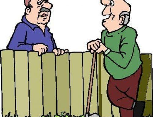 Tuin inrichten: Ideeën en tips voor de inrichting van uw tuin met tuinmeubels en tuinhout.