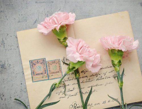 Alles over de enveloppe, de envelop uitgelicht