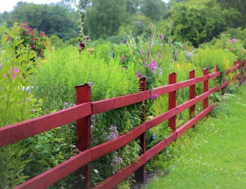 Plaats zelf een tuinafscheiding van hout en planken