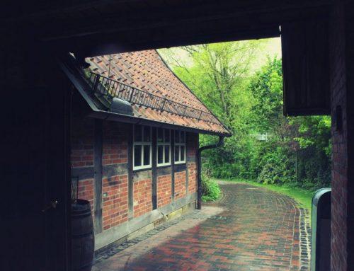 Het bijzondere dier van vakantiepark Twente