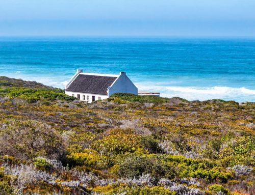 Op naar avontuurlijk Zuid Afrika!