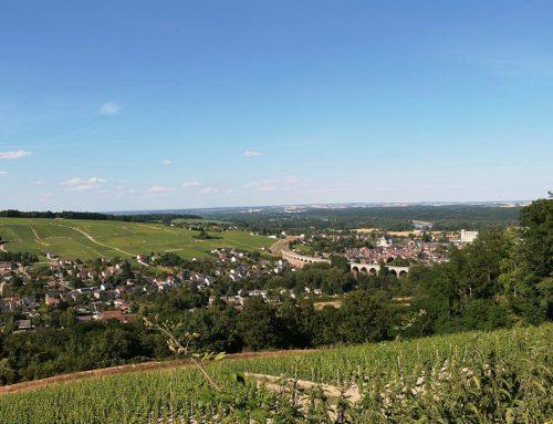 Wijnen van Domaine Michaud, Touraine – Loire