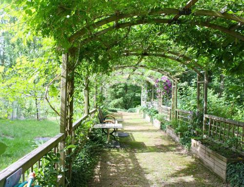 Maak sfeer in je tuin met een pergola