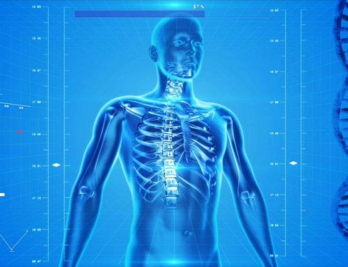 Osteoporose, wat is het en wanneer heb je het?