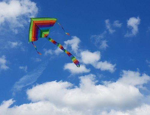 Maak online je eigen vlieger, tuinposter of plaatje op canvas