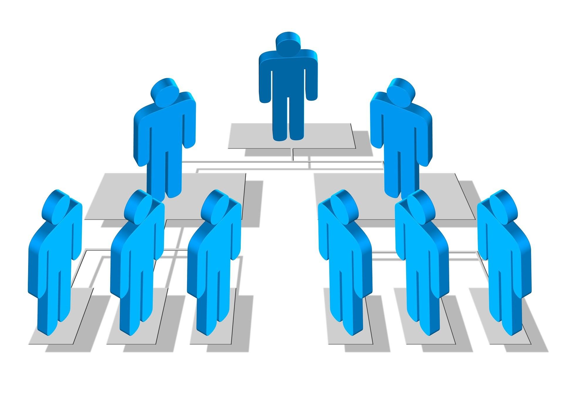 bestuur hierarchie