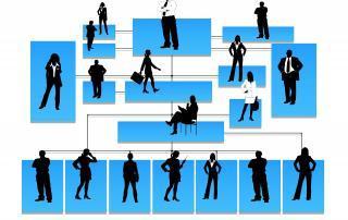 payrolling medewerkers hierarchie